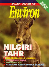 Environ Magazine Cover